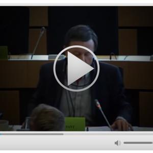 Sant video clip 3vii-01