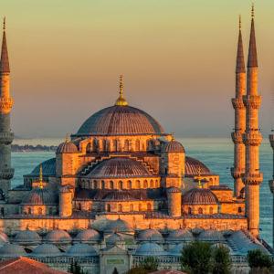 _0002_mosqueturkey