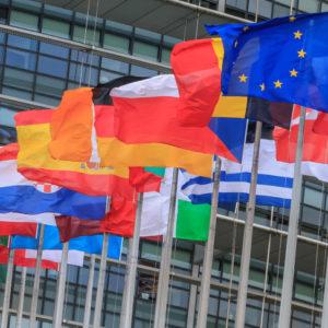 w-_0003_eu-member-flags